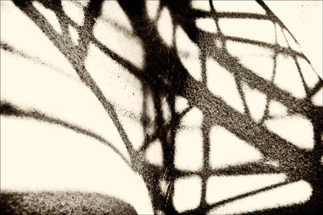 fotosensia-p.poiraudeau-0001